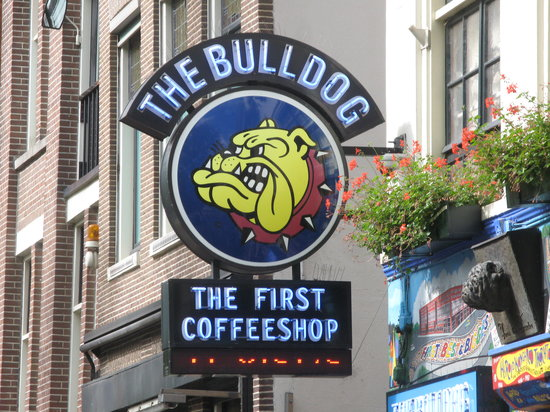 The Bulldog Hotel: always Lovely