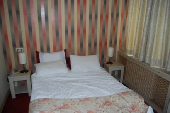 Barin Hotel: bedroom - neat but small