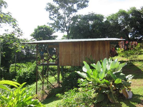 Finca Maresia: Superior bungalow