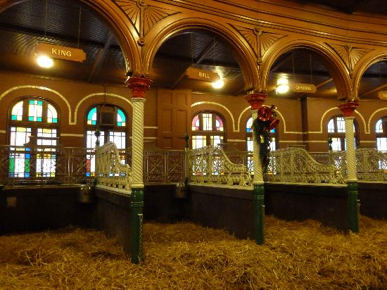 View Inside The Clydesdale Stables Picture Of Budweiser