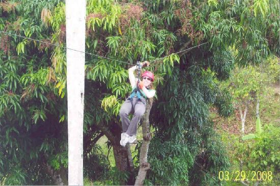 Iberostar Punta Cana: Day trip to zipline camp - super fun!