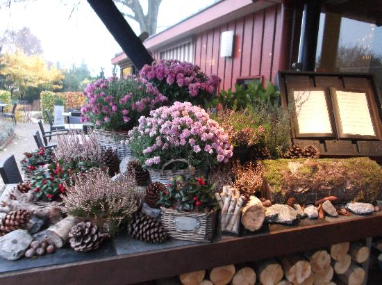 Hotel de Sterrenberg: 玄関脇に飾られた花