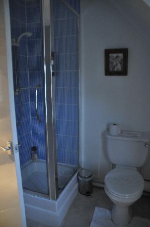 Lowerfield Farm Bed and Breakfast: Bathroom