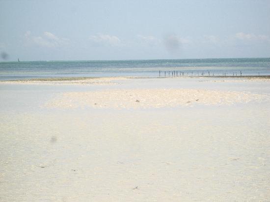 Paje Beach: dopo kilometri di sabbia ecco il mare....
