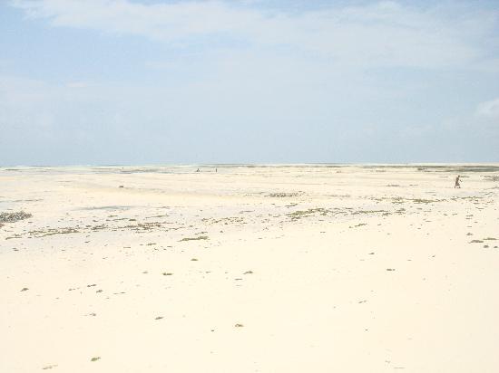 写真Paje Beach枚