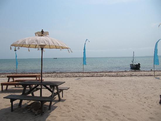 Casa Cabana Beach: The beach of the hotel