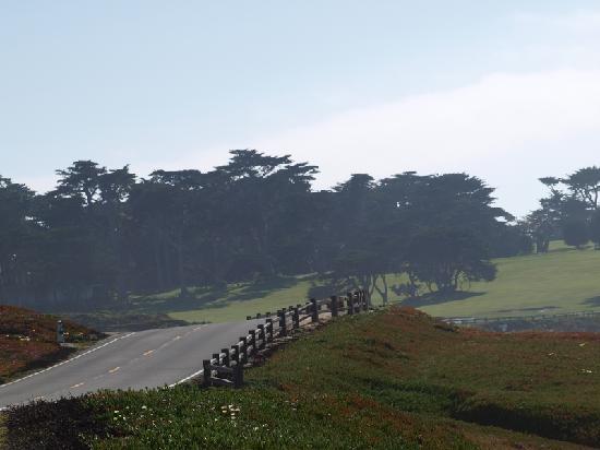 17-Mile Drive: Landschaft #3