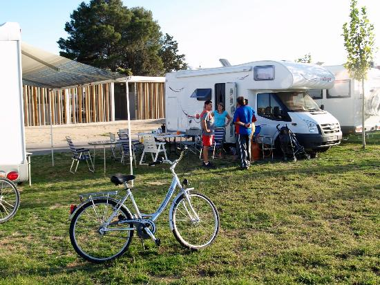Camping Ciudad de Zaragoza: Zona de parcelas