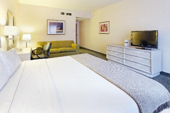 Holiday Inn Express Galerias San Jeronimo: Standard Room