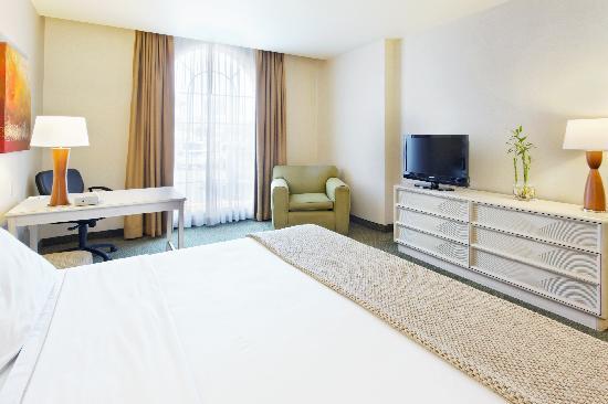 Holiday Inn Express Galerias San Jeronimo : Suite