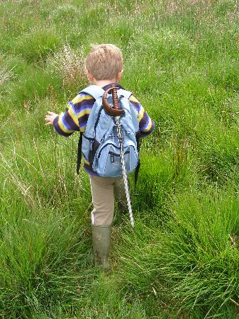 Wheatland Farm eco lodges: Let the kids do some good old fashioned exploring