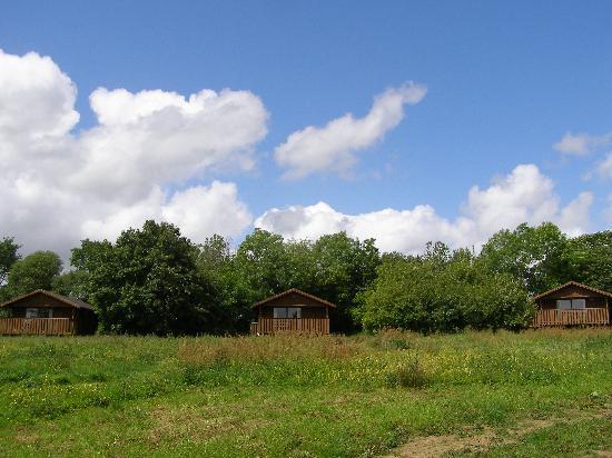 Wheatland Farm eco lodges: Three lodges set in grassland