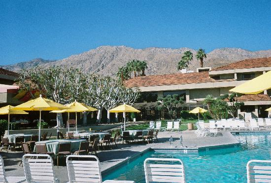 Hilton Palm Springs: View from the pool with the mountains