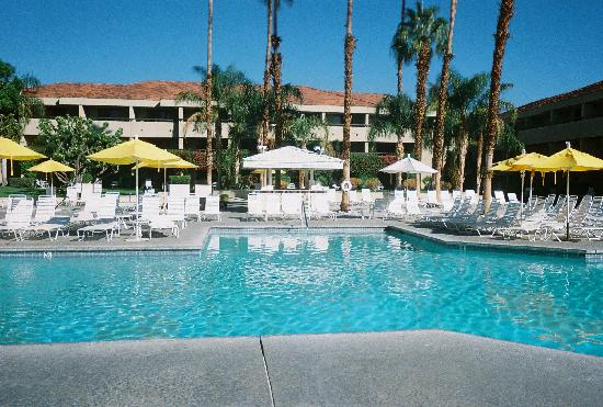 Hilton Palm Springs: View across the pool