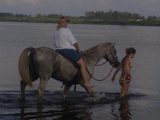 Cedar Cove Resort & Cottages: Horseback Riding in the Bay Really Cool