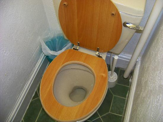Stockton Grange Hotel: THE TOILET