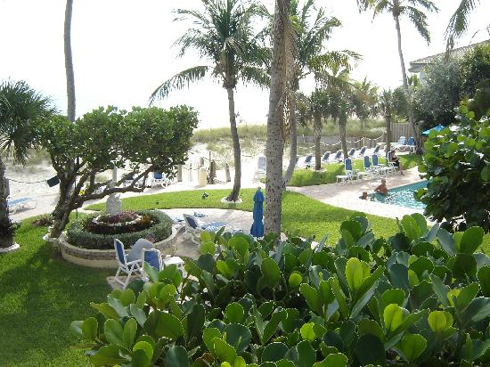 Tropic Seas Resort: View of the grounds and pool area