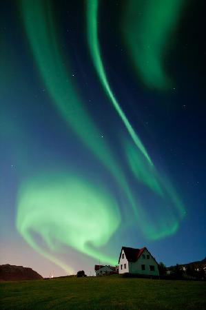 Minna-Mosfell Guesthouse: During cold winter nights the northern lights dance above the farm.