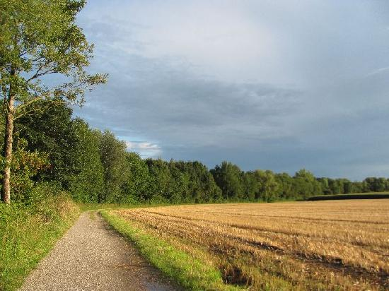 Pilgerweg: meandering trough green pastures and fields