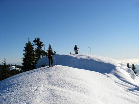 Foto de Mt Seymour
