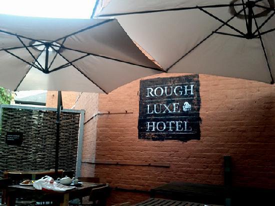 Rough Luxe Hotel : Backyard