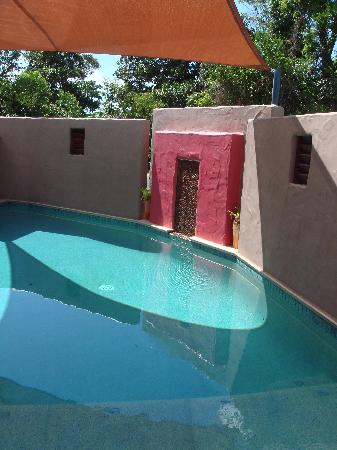 Pandanus Holiday Apartments: cool off in our beautiful pool