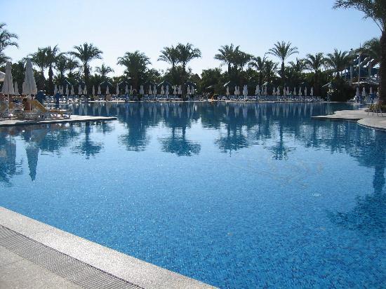 Delphin Palace Hotel: Poolanlage