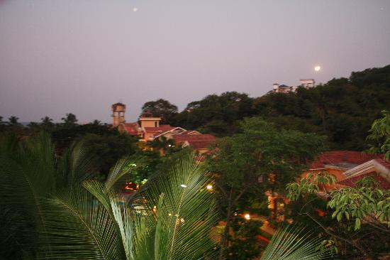 Bougainvillea Guest House Goa: The eveing view from the terrace
