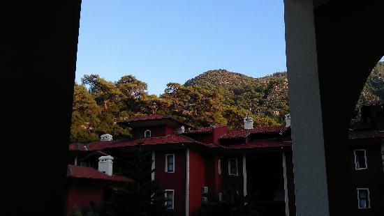Eden Garden Apartments: view from apartment