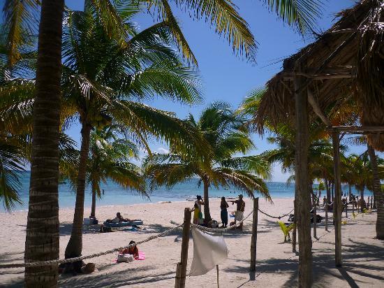 Gray Line Tours Riviera Maya: AKUMAL