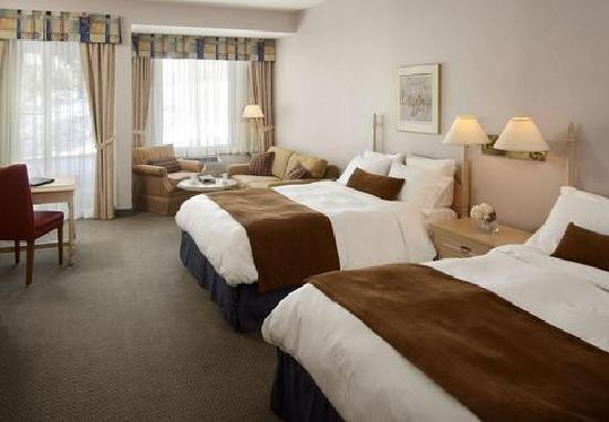 Pinestone Resort and Conference Centre: Fabulous room