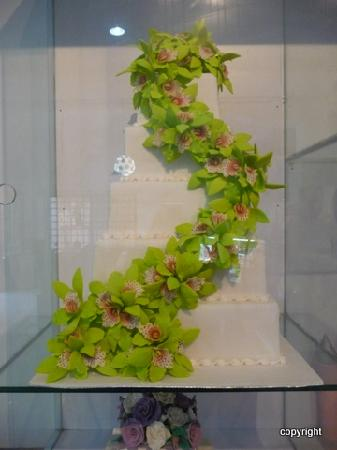 Bloom Cafe & Training Centre: incredible cakes on display