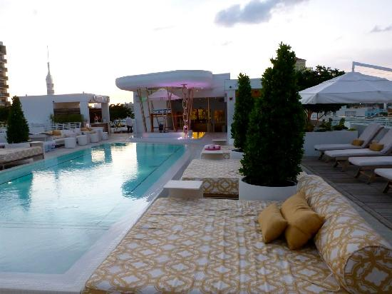 rooftop pool picture of dream south beach miami beach. Black Bedroom Furniture Sets. Home Design Ideas
