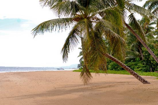 زيليتير بالكونيه ديل أطلانتيكو: the beach