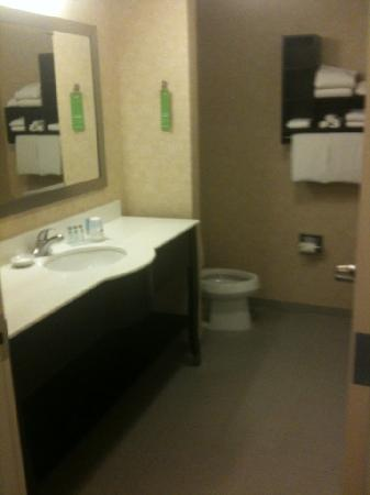 Hampton Inn & Suites Parsippany/North: Bathroom