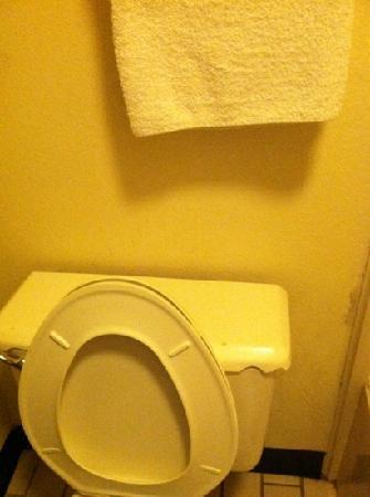 Diamondhead Inn & Suites : a broken toilet bowl cover -- really?