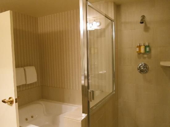 Paramount Hotel: Separate shower and tub