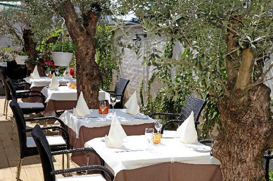 Paragon Apartments: restaurant garden