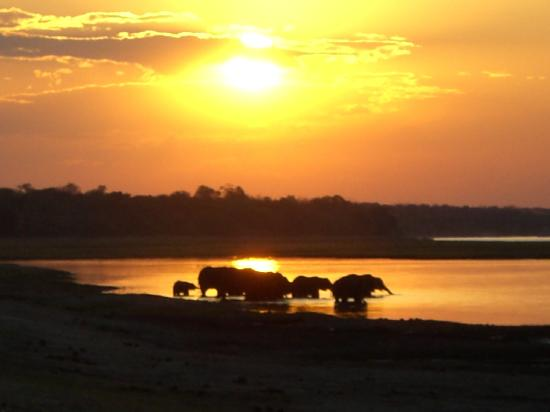 Kasane, Botswana: Sunset on the Chobe River