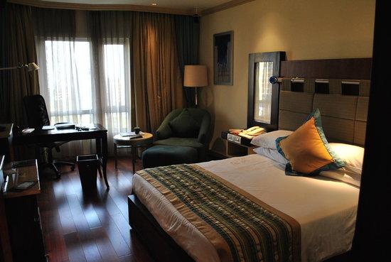 泰姬陵旁维安塔总统酒店照片