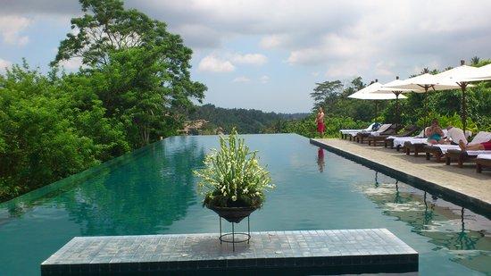 Alila Ubud : the pool