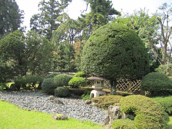 Fujita Memorial Japanese Garden: lower garden