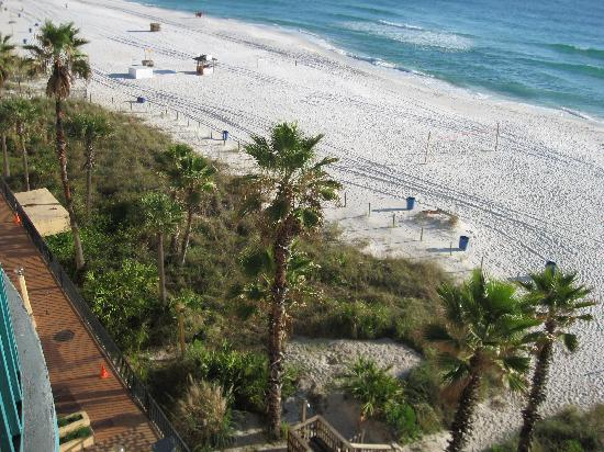 Days Inn Panama City Beach/Ocean Front: back of property, palms trees were beautiful