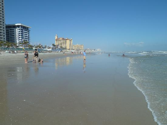 Shallow Beach Clean Water Picture Of Wyndham Ocean Walk Daytona Beach Tripadvisor