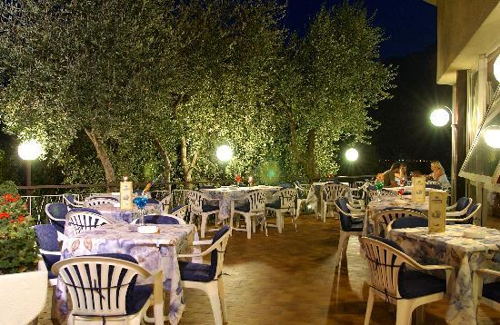 Hotel Garden : Terrazza