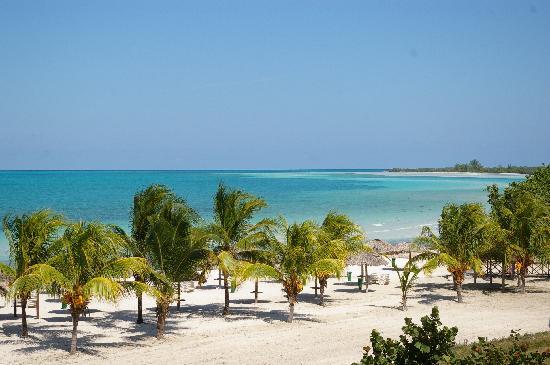 Hotel Playa Coco: beach