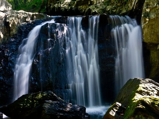 Swallow Falls State Park Muddy Creek Tallest In Maryland