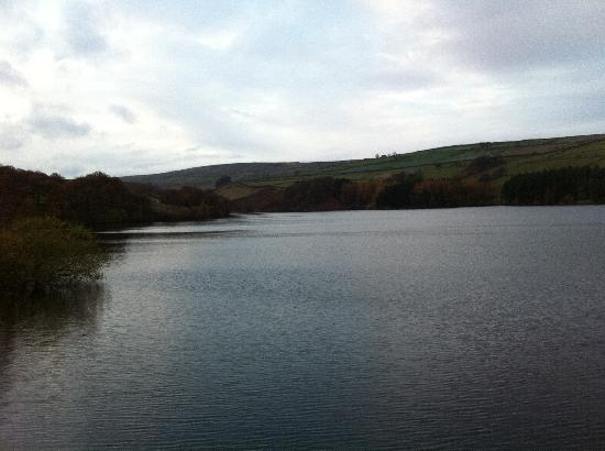 The Fleece: View of Digly, Reservoir just down the hill.