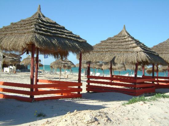 Green Palm: plage de l hôtel