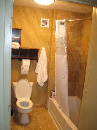 Hampton Inn & Suites Fargo: King Suite Balcony Room bathroom